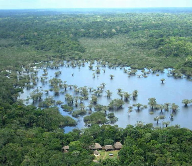 Cuyabeno Amazon Reserve Ecuador Tour