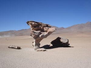 Arbol de pierda salar tour Bolivia
