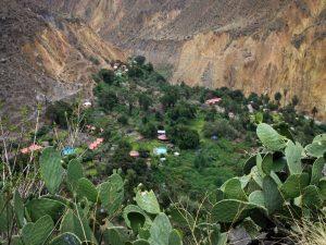 Oasis Cabanaconda trekking Peru