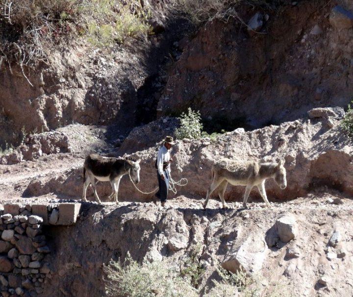 Cabanaconda Trek maatreizen Peru