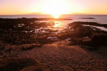 Eco Galapagos Ecuador reis