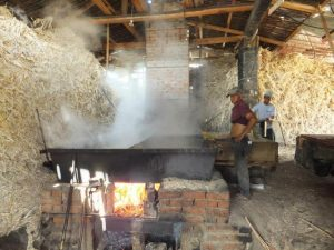 Cafe y Panela Tour Vilcabamba