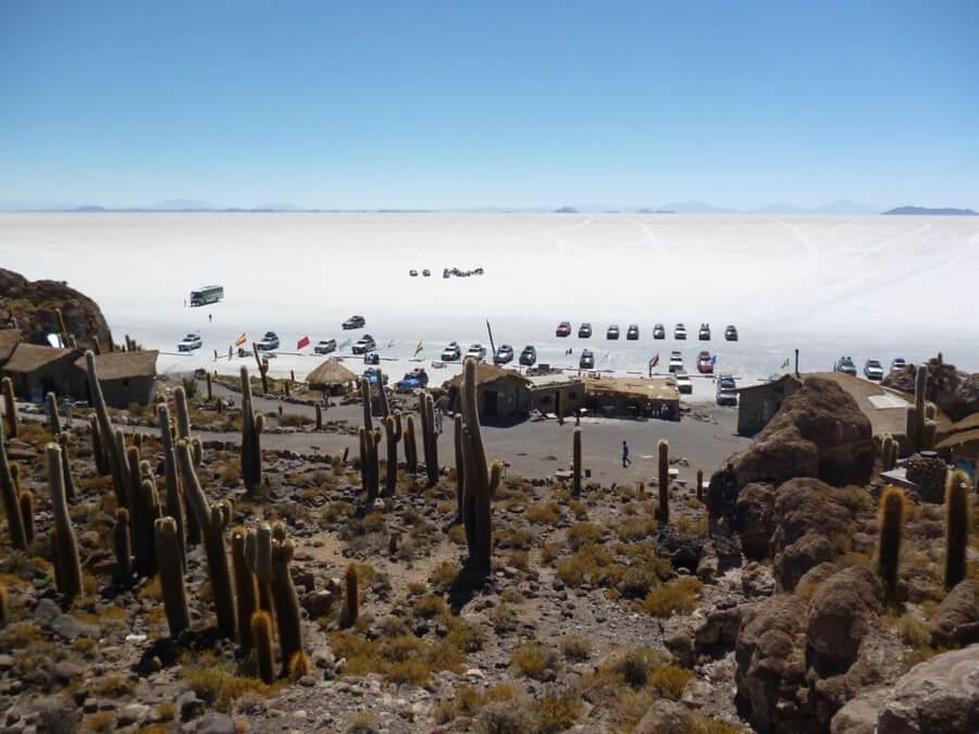 Inca Wasi Cactus Eiland