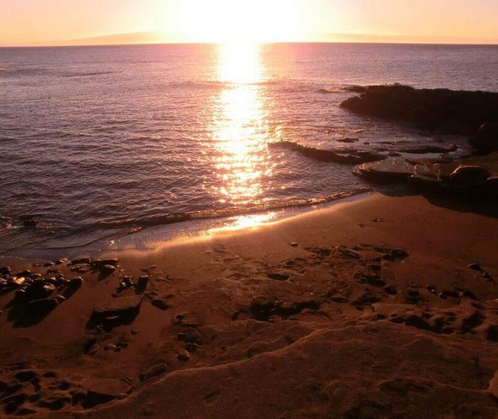 Galapagos Ecuador rondreizen