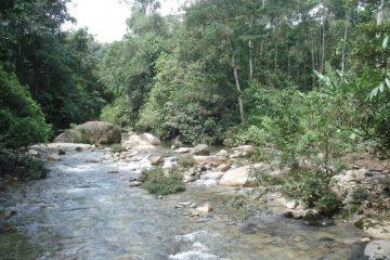 Amazone huwelijksreis Ecuador