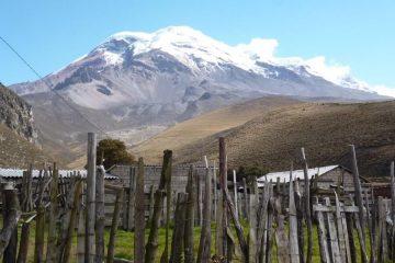 Chimboraz Polylepis trek Ecuador