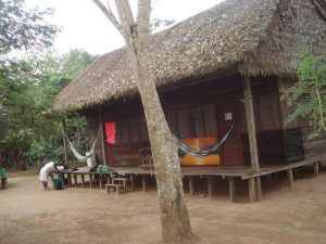 Madidi Tacuaral Amazon Lodge