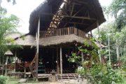 TRC Refugio in Tambopata Reserve