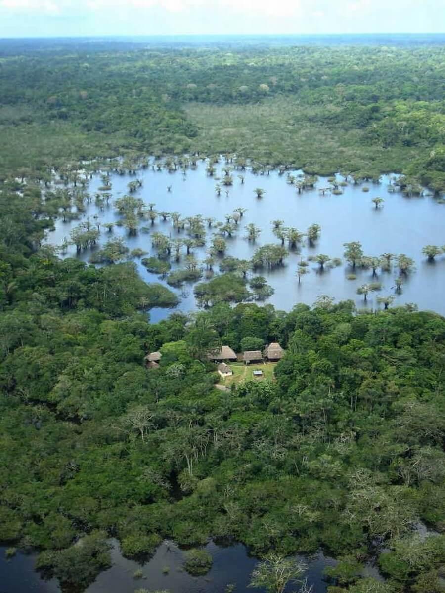 Cuyabeno Amazone Lodge Ecuador reis