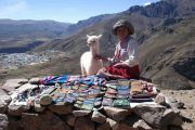 Girl with lama selling souvenirs