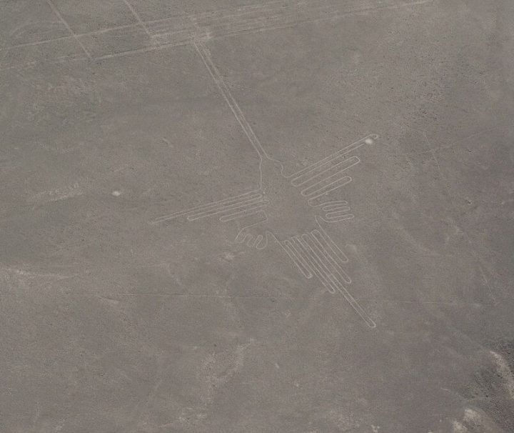 Nazca Lines, Humming Bird