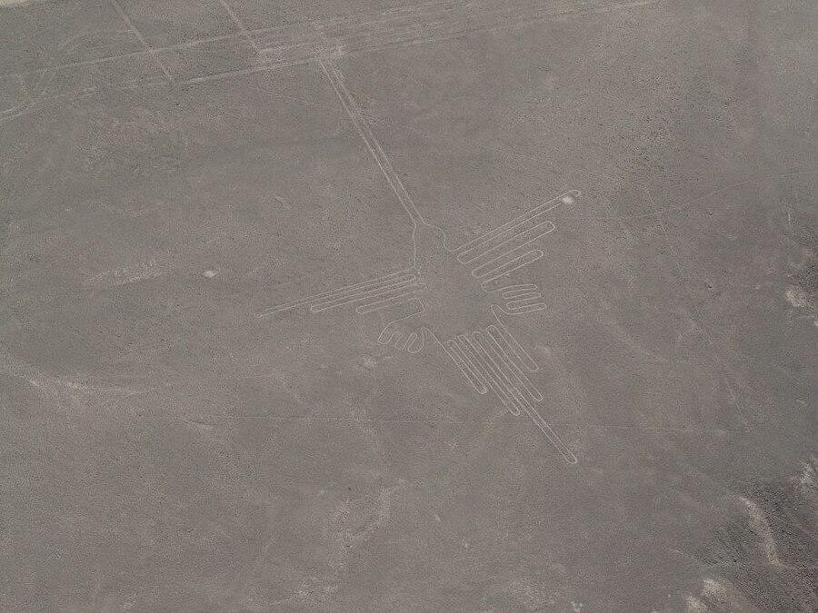 Nazca Lines, Humming Bird