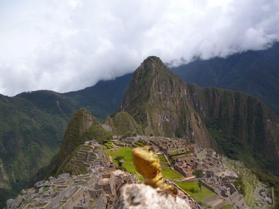 Lizard at Machu Picchu