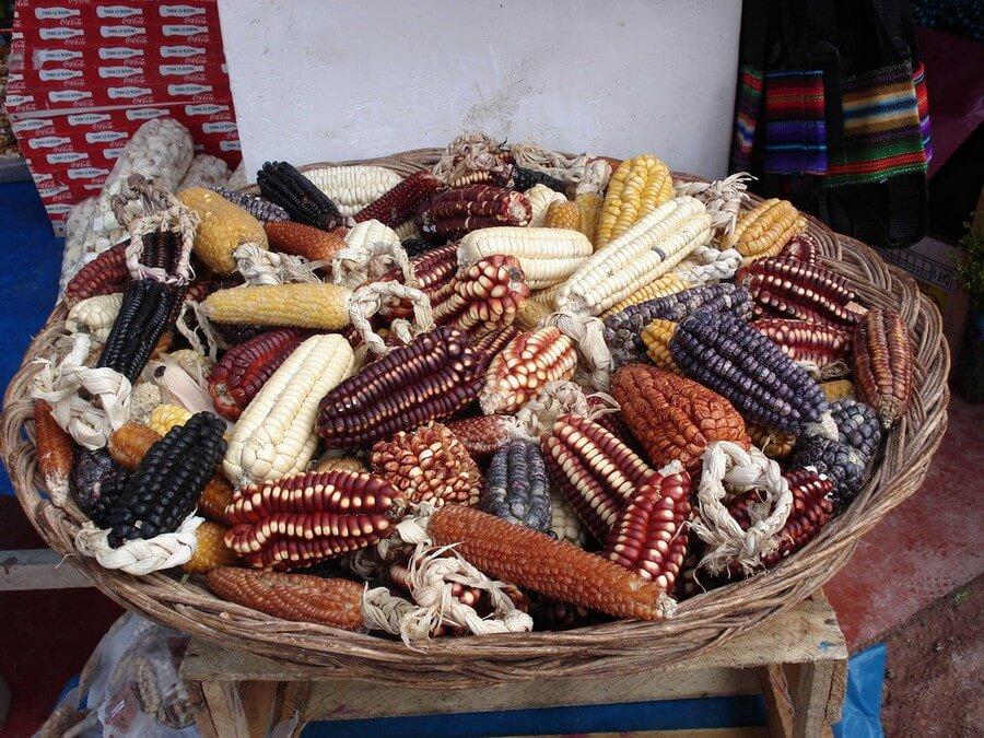 Natural corn colors