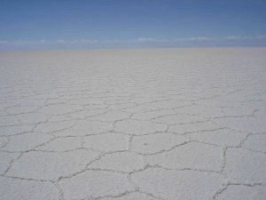 Hexagonal salt shapes on the Salar