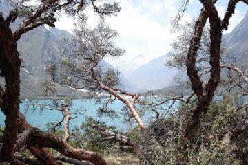 Visit Laguna Llanganuco
