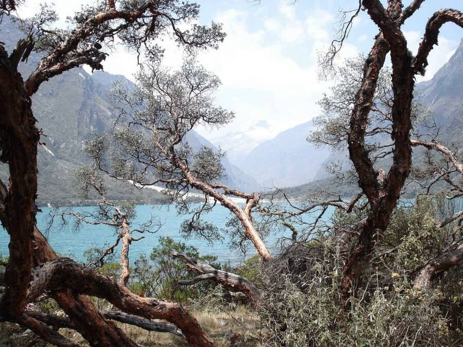Laguna Llanganuco Huaraz Peru