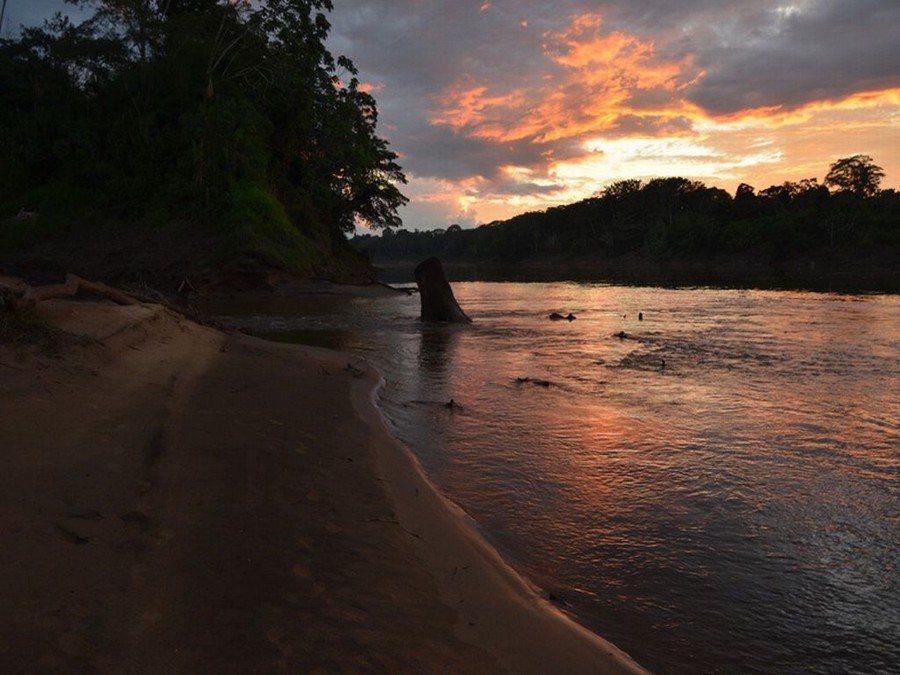 Sunset Tambopata Amazon