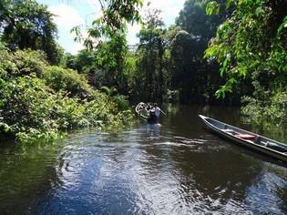 Paddeling in Cuyabeno Amazon Reserve