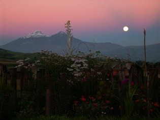 Romantische Huwelijksreis Ecuador