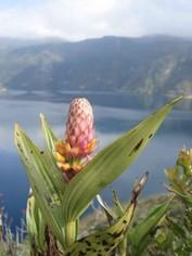 Cuicocha Otavalo Ecuador reizen