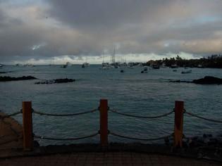 Puerto Ayora Galapagos harbor