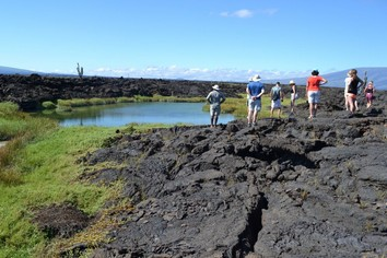 Volcanic grounds on the Galapagos