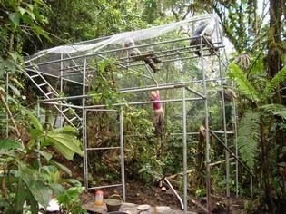 Cage building Merazonia Refuge