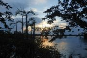 Zonsondergang in Amazone van Cuyabeno