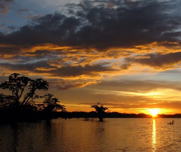 Cuyabeno Amazone Romantische reis Ecuador