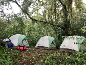 Camping Cuyabeno Amazon tour