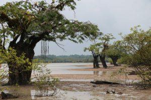 Paddling tour Cuyabeno Amazon