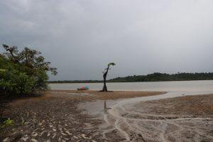 Roeien Cuyabeno Amazone reservaat