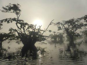 Roeien Cuyabeno Amazone tour